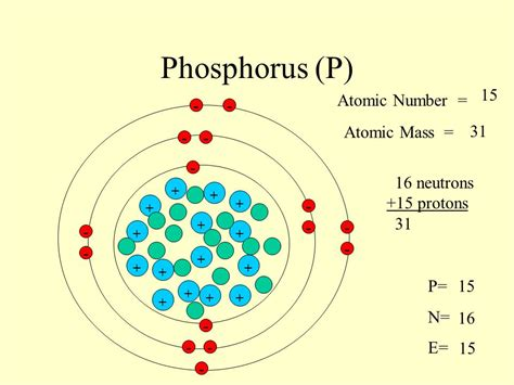 Phosphorus Protons Neutrons Electrons by Sodium Na 11 Atomic Number Atomic Mass
