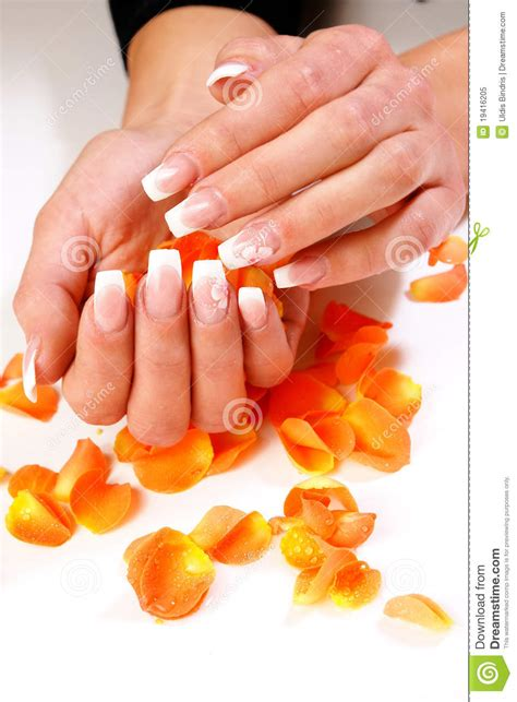 nail painting for free nail royalty free stock photo image 19416205