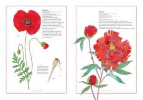 inventario ilustrado de flores letras pequenas invent 225 rio ilustrado das flores guia do lazer