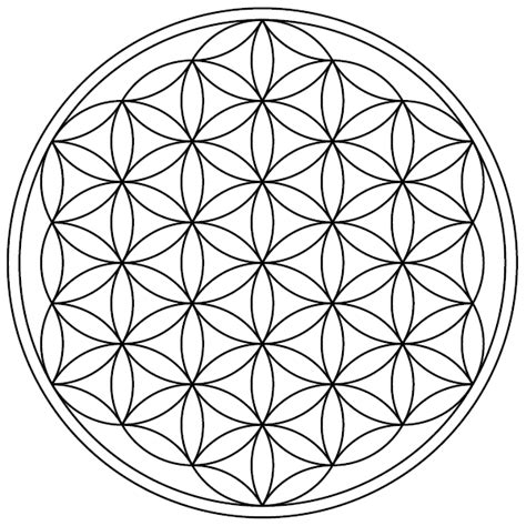 mandala coloring pages wikipedia file flower of life 19circles36arcs enclosed png