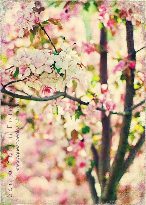 imagenes fondo de pantalla vintage fondos de pantalla de flores vintage imagui