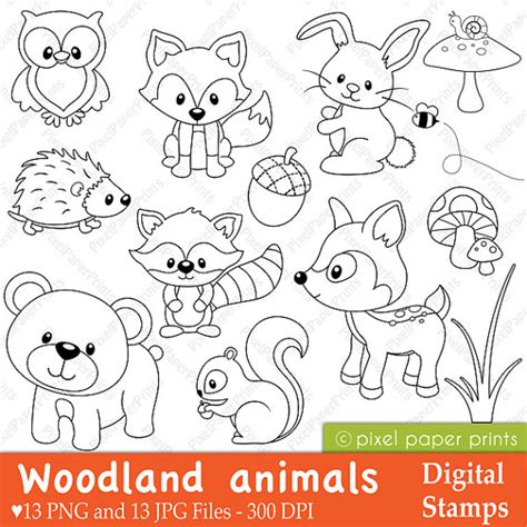 woodland animals an colouring book for dreaming and relaxing books woodland animals digital sts clipart