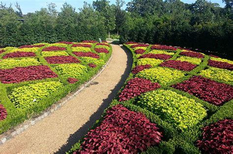 color garden contrasts garden shangri la botanical gardens and nature