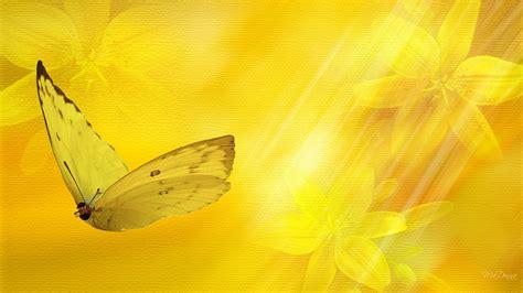 black wallpaper with yellow butterflies 1544 yellow butterfly best wallpaper walops com