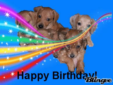 happy puppies website happy birthday puppies picture 108483952 blingee