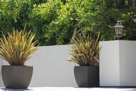 Planters With Plants by Containers For Plants