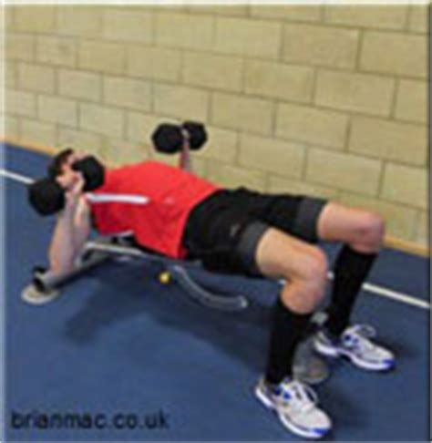 high bench two dumbbell rowing circuit training exercises