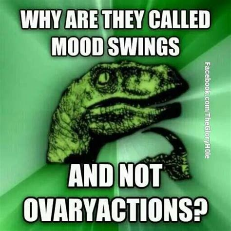 why am i having mood swings female why are they called mood swings meme pinterest