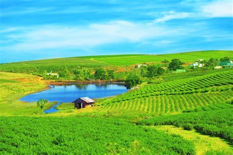 imagenes de paisajes uñas modelo de produ 231 227 o consorciada gera maior rentabilidade no