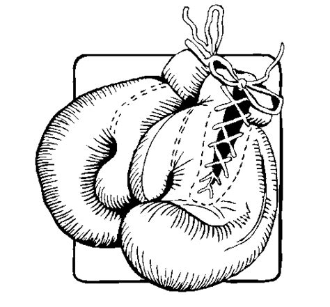 free coloring pages of boxing gloves