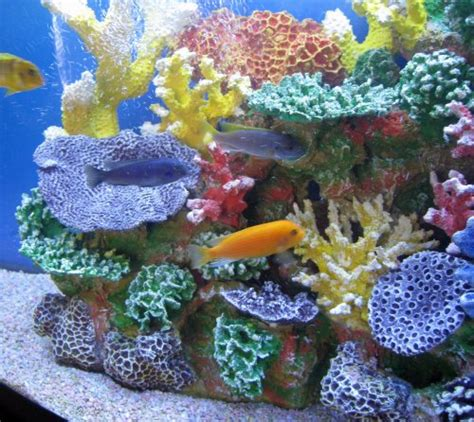 Artificial Coral Reef Aquarium Decorations by Instant Reef R043s Artificial Coral Reef Aquarium Decor