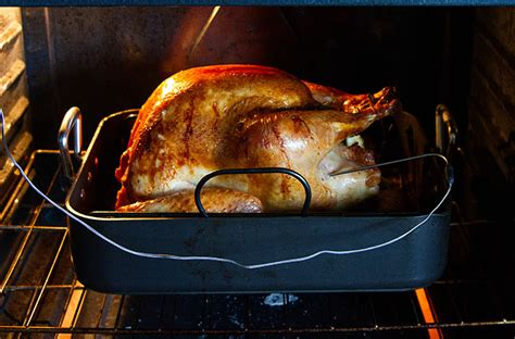 lemon and fennel roast turkey recipe la fuji mama