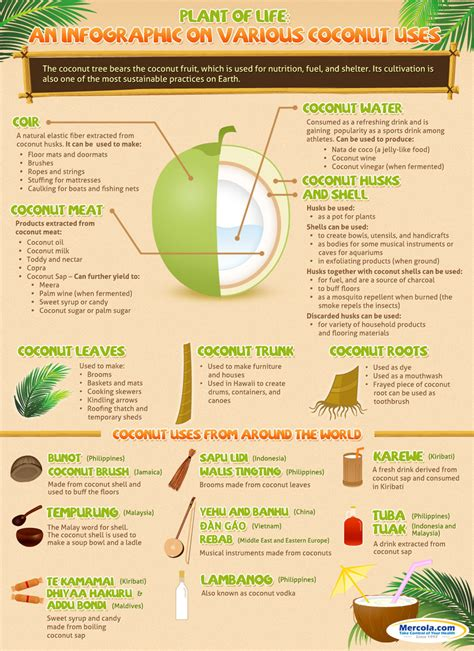healthy fats mercola the about saturated fats and the coconut benefits