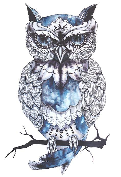 owl tattoo png transparent owl tumblr