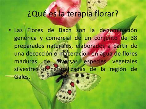 imagenes de flores de bach flores de bach y m 225 ndalas
