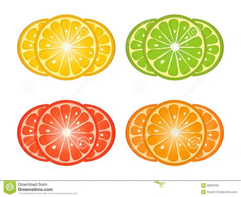 design element citrus citrus fruit slices royalty free stock photo image 38303705