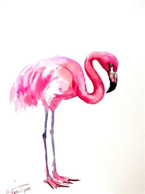 Flaminggo Top Ori Chi 210 best images about hoe teken ik vogels on