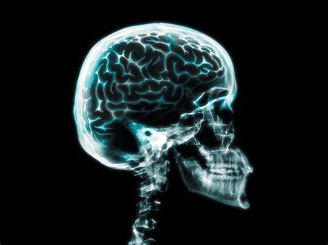 imagenes animadas rayos x fotos del cuerpo humano con rayos x
