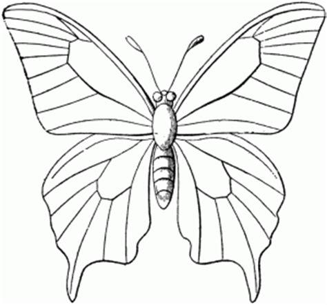 Oven Hitam Butterfly paj艱ki kolorowanki ze zwierz苹tami