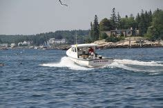 Coastal Harbour Detox by On Squirrel Island In Boothbay Harbor Maine Tree Stumps