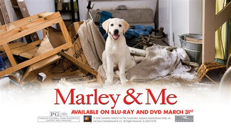 marley and me marley and me images marley and me hd wallpaper and background photos 5315807