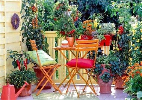 how to make a balcony vegetable garden socquiz club