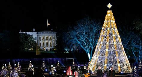 christmas activities in wa state tree lighting events drive the nation
