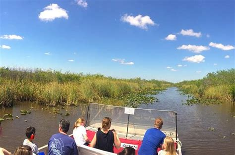 everglades airboat tours reviews miami shark valley everglades guided tram tour provided by shark