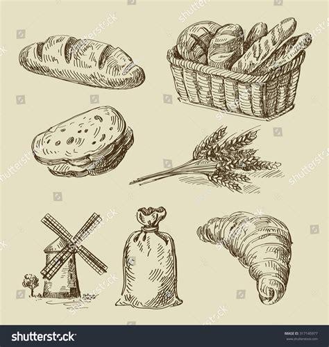 food doodle bread vector food sketch bread stock vector 317145977