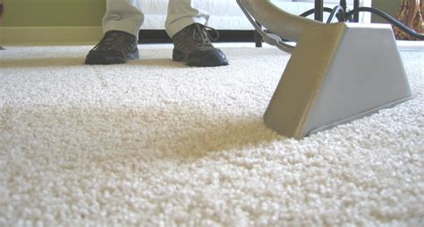 Professional Area Rug Cleaning Professional Area Rug Cleaning Roselawnlutheran