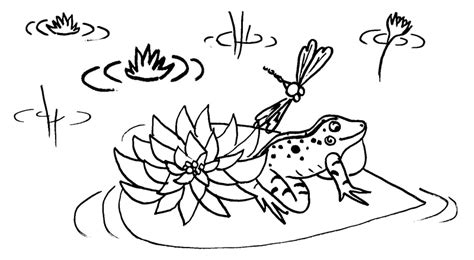 frog habitat coloring page free frog coloring pages to print out and color