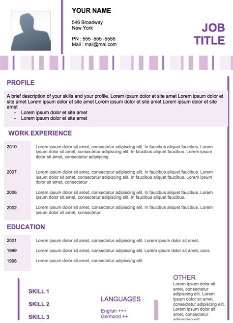 professional resume template modern resume 11 exles