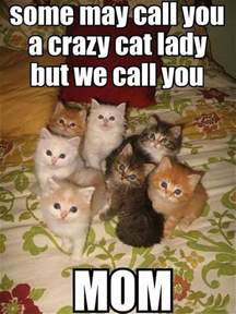 Crazy Cat Lady Meme - some may call you a crazy cat lady but we call you mom