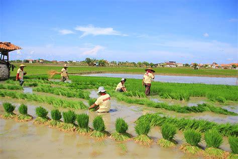 Bio Di Guardian Indonesia diresmikan bio center plant dan unit produksi enzim