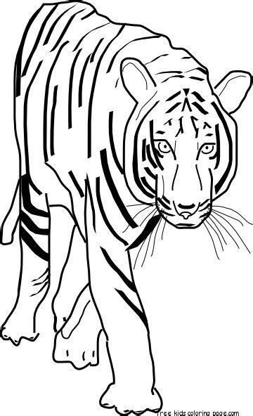 coloring page bengal tiger printable coloring pages bengal tigers free printable
