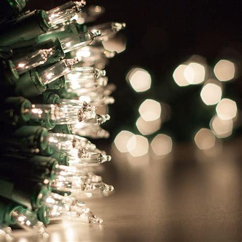 Christmas Lights   100 Clear Twinkle Christmas Tree Mini