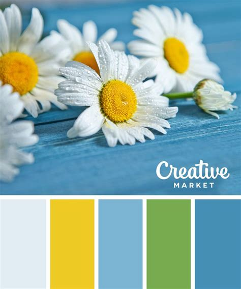summer colors best 25 color palettes ideas on pinterest