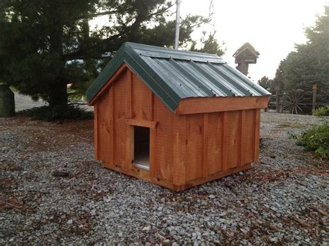 home built dog houses small medium dog house amish built chicken coops