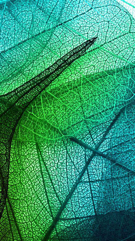 wallpaper iphone leaf leaves art green blue pattern iphone 6 wallpaper green