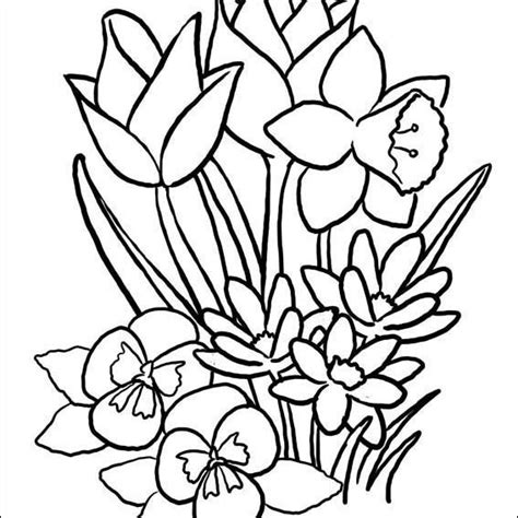 places  find  printable spring coloring pages