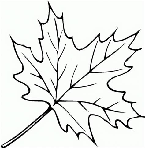 childrens coloring pages fall leaves simple leaf colouring pages google search simple