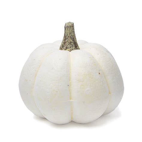 Pumpkin Vase Filler by Small White Artificial Pumpkin Vase Fillers Table