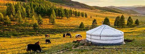 Colorful Interior by Mongolia Must Reads The Essential Books About Mongolia