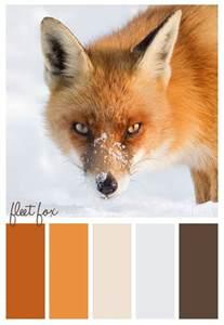 fox colors color scheme fox winter us