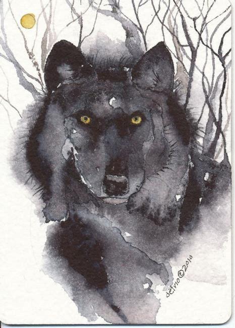 imagenes lobo negro imagenes de lobos negros imagui