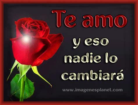 imagenes de rosas rojas con frases de amor imagenes de rosa rojas con frase de amor imagenes bonitas