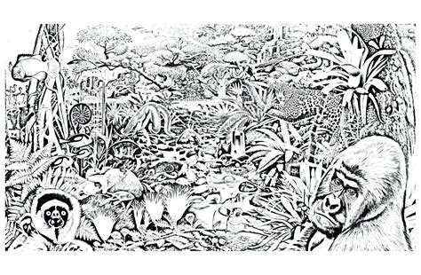coloring pages for animals in the jungle coloring pages of forest home forest animals coloring
