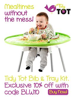 the baby led weaning quick 0091947553 baby led weaning quick easy baby led weaning recipes for health conscious mums