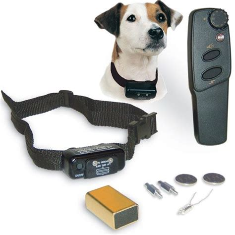 puppy shock collar shock collar for dogs considerations top 2