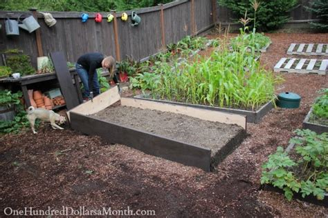 How To Make A Box Garden by Building New Garden Boxes One Hundred Dollars A Month